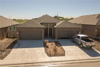New Braunfels Multi Family Home For Sale: 125 Joanne Cv W