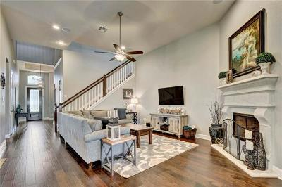 Georgetown Single Family Home For Sale: 320 Alabaster Caverns Dr