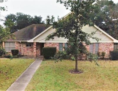 Travis County Single Family Home For Sale: 7100 Squirrel Oak Cir