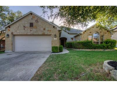 Austin Single Family Home For Sale: 320 Manchester Ln