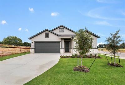 Leander Single Family Home For Sale: 1300 Eagle Ray Street