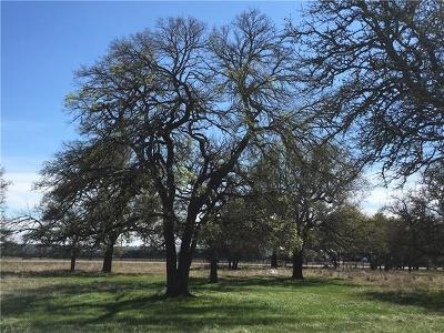 Liberty Hill Residential Lots & Land For Sale: 201 Oak Hill Dr