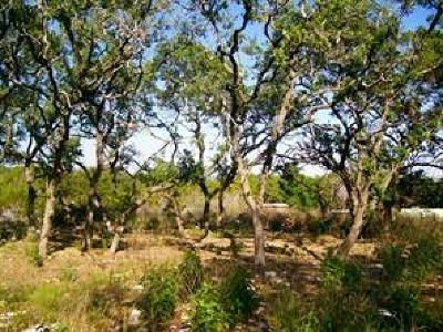 Austin Residential Lots & Land For Sale: 2305 Pyramid Dr