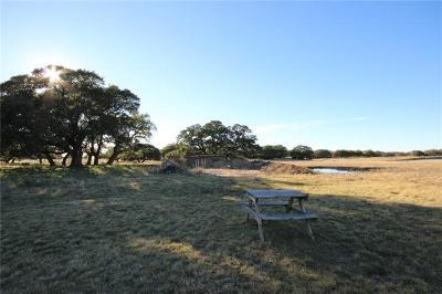 Lampasas Farm For Sale: 98 Blackbuck Ridge Dr