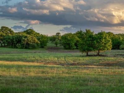 Bell County, Burnet County, Coryell County, Lampasas County, Mills County, Williamson County, San Saba County, Llano County Residential Lots & Land For Sale: Lot 43 Fm 963