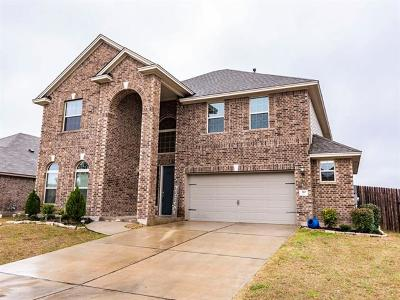 San Marcos Single Family Home For Sale: 310 Leather Oak Loop