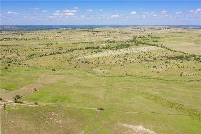 Bell County, Burnet County, Coryell County, Lampasas County, Llano County, McLennan County, Mills County, San Saba County, Williamson County Farm For Sale: 2685 Cr 212