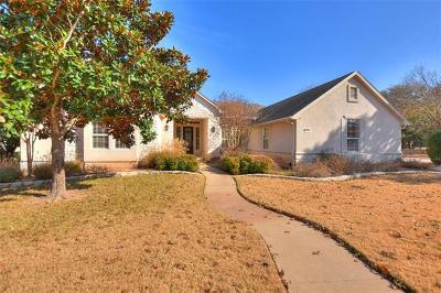 Georgetown Single Family Home For Sale: 102 Golf View Dr