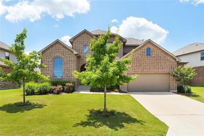 Austin Single Family Home Coming Soon: 314 Catalina Ln