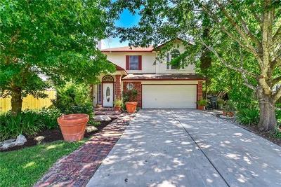 Kyle Single Family Home For Sale: 141 Pony Cv