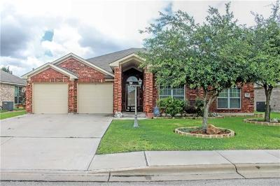 Lockhart Single Family Home For Sale: 1509 Paint Brush Dr