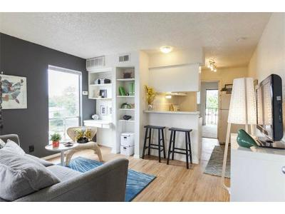 Austin Rental For Rent: 409 W 38th St #104