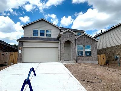 Buda Single Family Home For Sale: 247 Andesite Trl