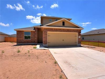 Kyle Single Family Home For Sale: 687 Evening Star Dr