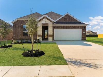 Round Rock Single Family Home For Sale: 5912 Agostino Drive