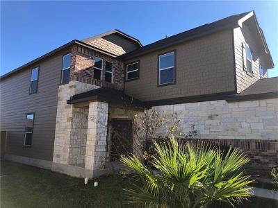 Austin Single Family Home For Sale: 9105 Winter Haven Rd