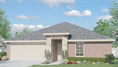 Hays County, Travis County, Williamson County Single Family Home For Sale: 6621 San Isidro Dr