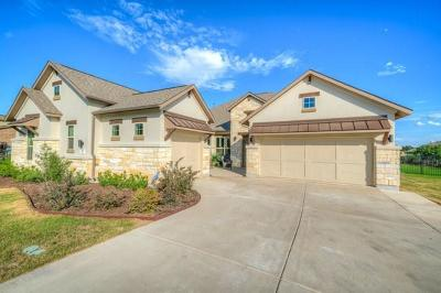 Dripping Springs Single Family Home For Sale: 273 Ranch Ridge Dr