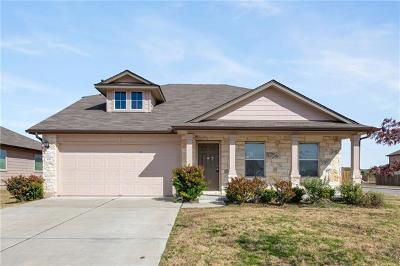 Kyle Single Family Home For Sale: 100 Wallops Cv