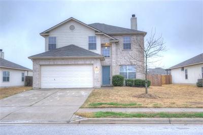 Single Family Home For Sale: 205 Flinn St