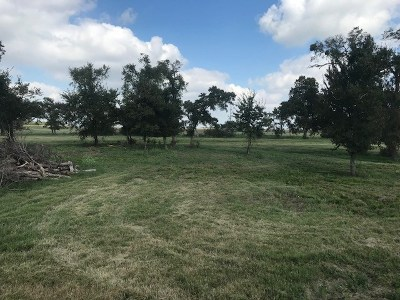 Farm For Sale: Tract 3 Fm 1466