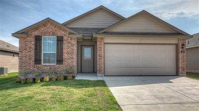 Hays County Single Family Home For Sale: 120 Dylan