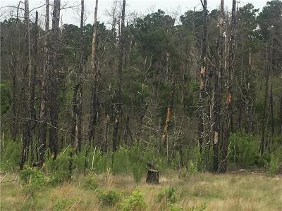 Smithville Residential Lots & Land For Sale: tbd Spring Hollow Trl
