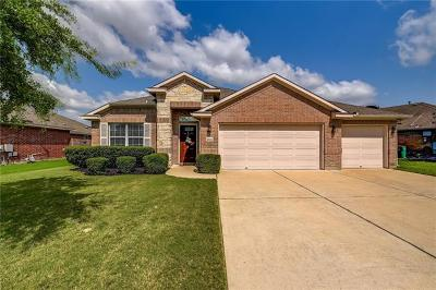 Pflugerville Single Family Home For Sale: 18209 Stevie Ray Dr