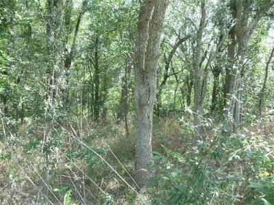 Bastrop County Residential Lots & Land For Sale: Chestnut St