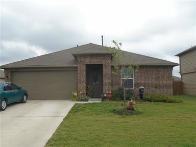 Kyle Single Family Home For Sale: 232 Voss
