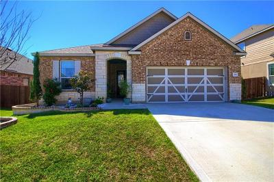 Georgetown Single Family Home For Sale: 231 Telluride Dr