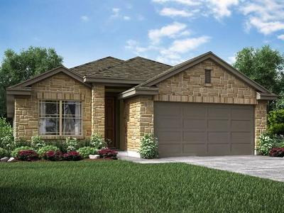 Round Rock Single Family Home For Sale: 5817 Livorno Cv
