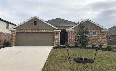 Pflugerville Single Family Home For Sale: 17005 Borromeo Ave