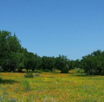 Spicewood TX Residential Lots & Land For Sale: $72,500