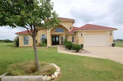 Blanco Single Family Home For Sale: 102 Roy Nichols Dr
