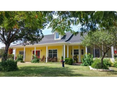 Dripping Springs Single Family Home For Sale: 1315 Overland Stage Rd