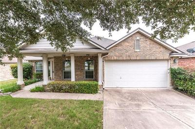 Pflugerville Single Family Home For Sale: 14621 Dreamtime Ln