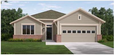 Buda Single Family Home For Sale: 471 Bridgestone Way