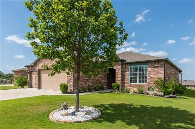 Sun City Single Family Home For Sale: 207 Bartlett Peak Dr
