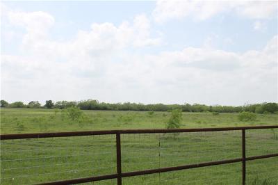 Lockhart Farm For Sale: State Park Rd
