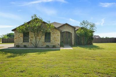Liberty Hill Single Family Home For Sale: 301 Sarahs Ln
