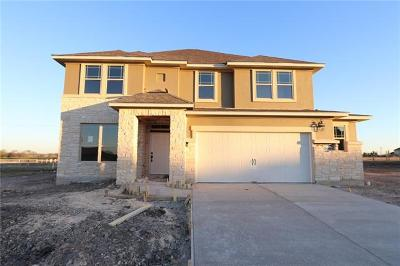 Round Rock Single Family Home For Sale: 3196 Hidalgo Loop