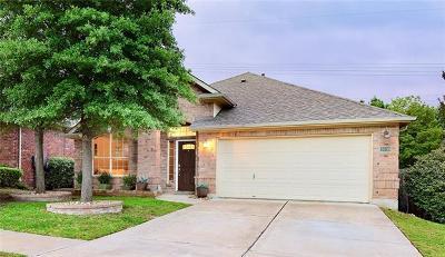 Austin Single Family Home For Sale: 3009 Centennial Olympic Park