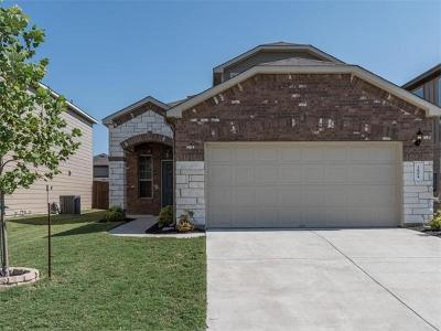 Travis County Single Family Home For Sale: 3804 Tranquil Ln