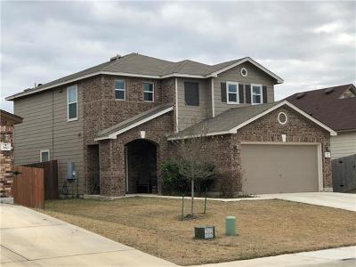 Kyle Single Family Home For Sale: 370 New Bridge Dr