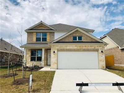 Pflugerville Single Family Home For Sale: 16924 Borromeo Ave