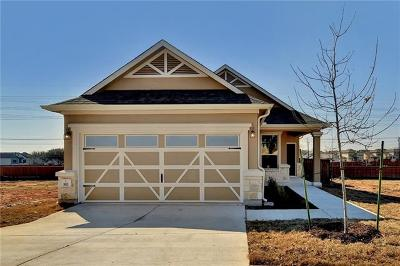 Hays County, Travis County, Williamson County Single Family Home For Sale: 811 Sandhill