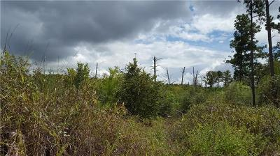Bastrop County Residential Lots & Land For Sale: Alau Ct