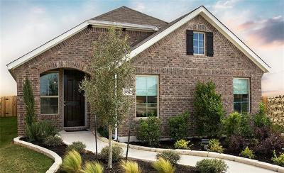 Round Rock TX Single Family Home For Sale: $259,635