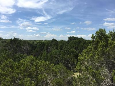 Georgetown Residential Lots & Land For Sale: 2590 County Road 289